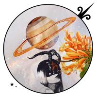 Saturn in Capricorn 2017/2020